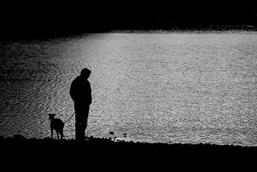 shadow of man and dog standing near dreary lake